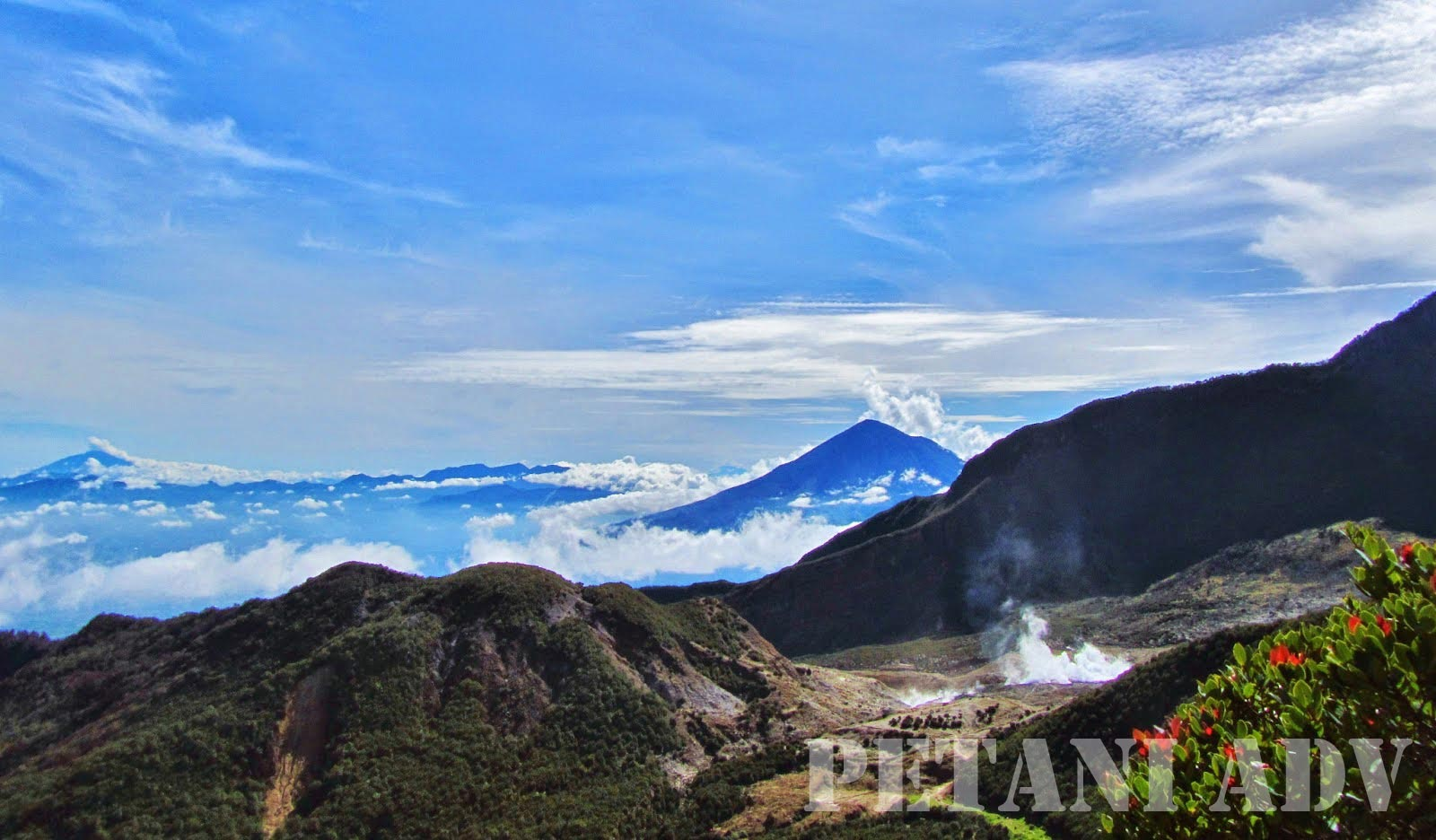 Image result for Gunung Papandayan