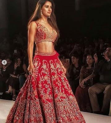 Disha Patani Hot Images In Red Saree