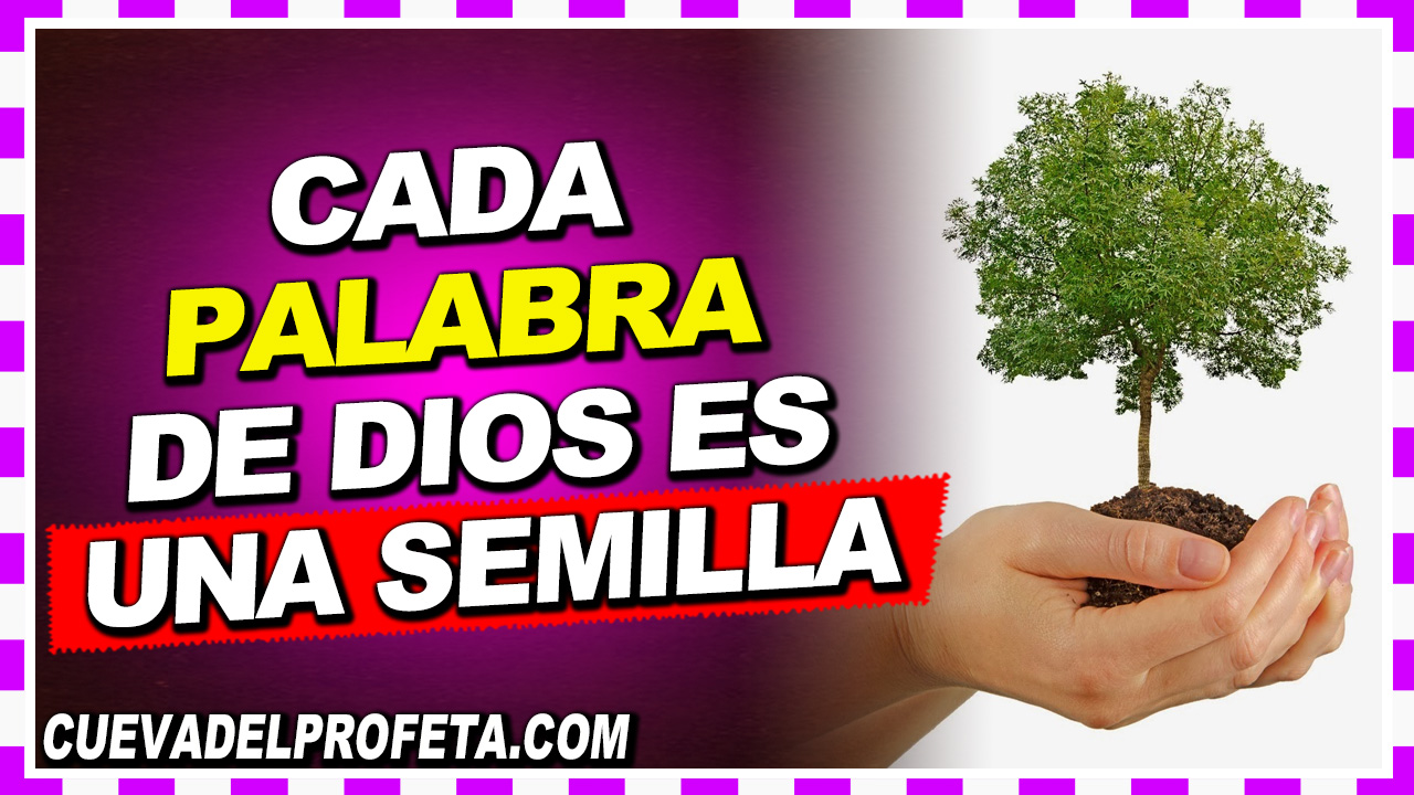 Cada Palabra de Dios es una Semilla - William Branham en Español