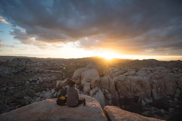 Things to Do in Joshua Tree Besides Hiking and Camping.