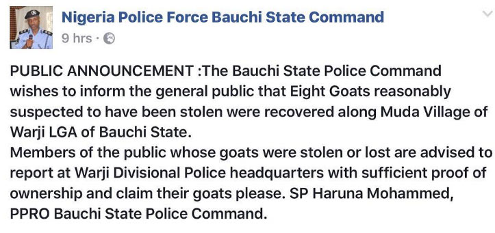 In case your eight goats are missing