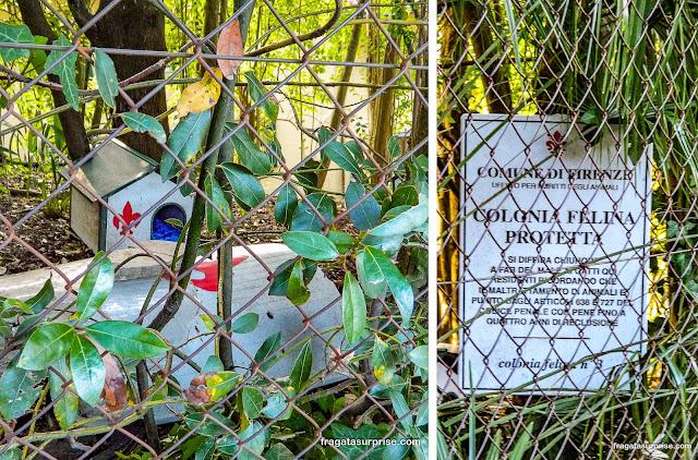 Gatil público de Florença, Itália