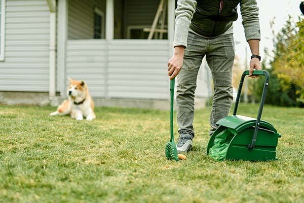 poopail, trouble-free pet waste cleaning solution