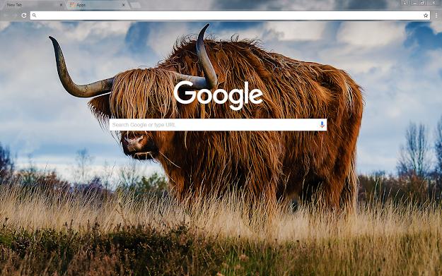 Bull Google Theme