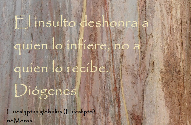 El insulto deshonra a quien lo infiere, no a quien lo recibe Diógenes