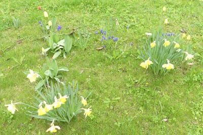 Draußen auf der Spielwiese bei Regen - Aprilwetter... :-)