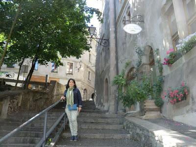 ciudad vieja ginebra