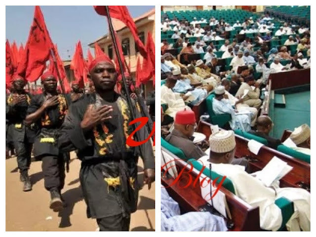 Court declares Shi'ites as terrorist group, orders proscription