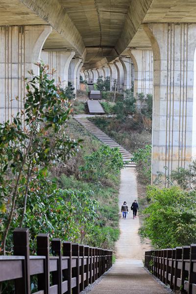 台中沙鹿休閒景觀步道隱藏在國道的地下城堡,沙鹿萬里長城拍美照