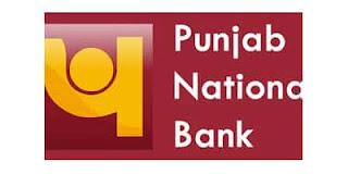 Punjab National Bank SO Recruitment 2020 Apply For 535 Punjab National Bank Latest bank job information, Punjab National Bank job vacancy in hindi