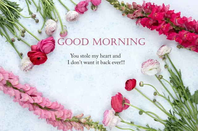 good morning flowers pic