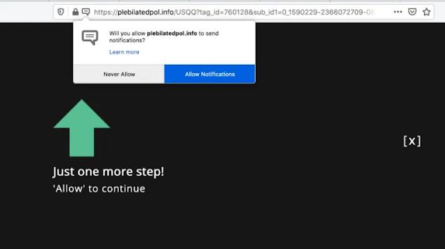 Plebilatedpol.info pop-ups