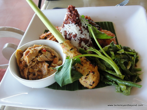 shredded chicken and fish stick at Indus restaurant in Ubud, Bali, Indonesia