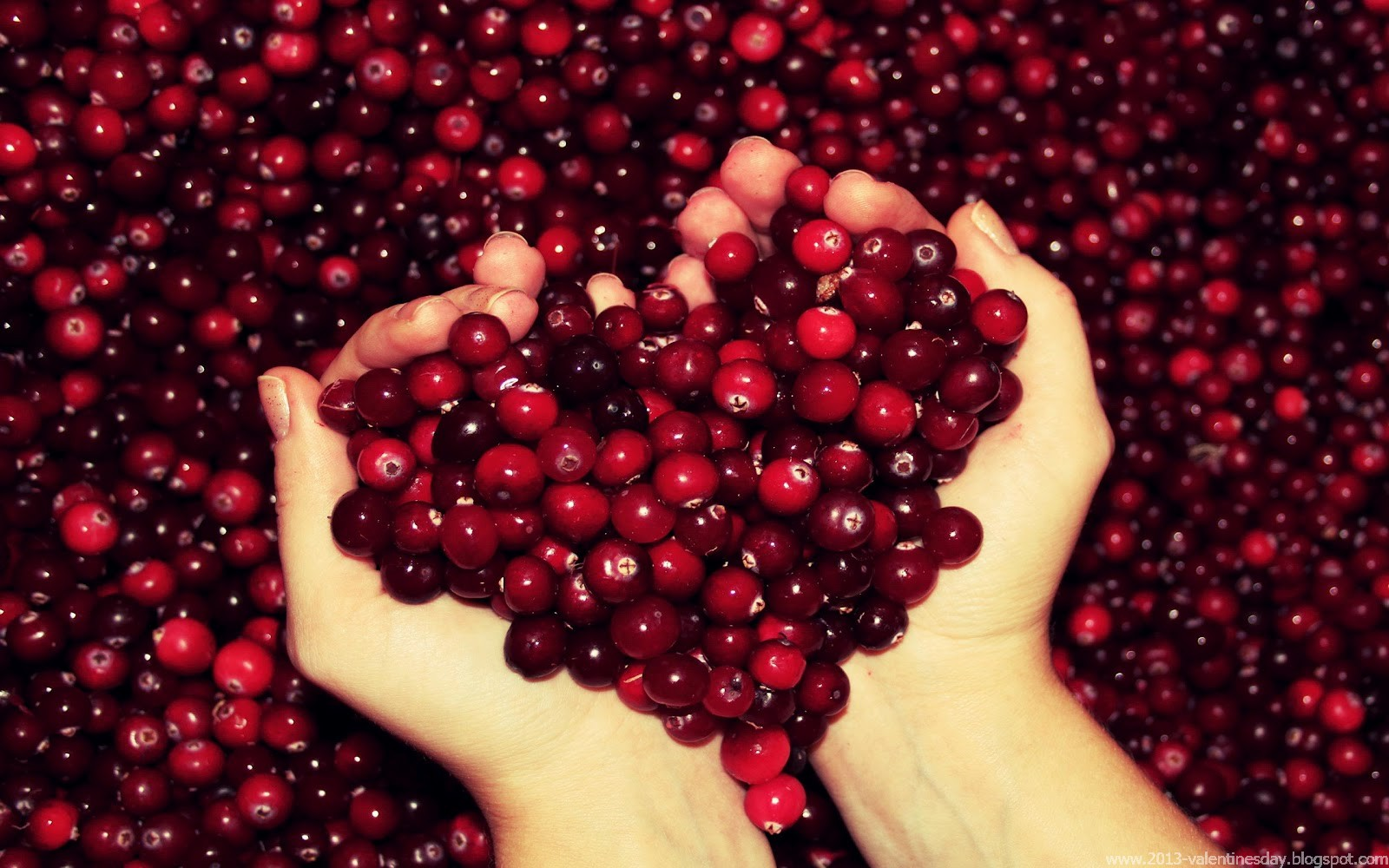 Cranberries+Heart+Love+Wallpaper