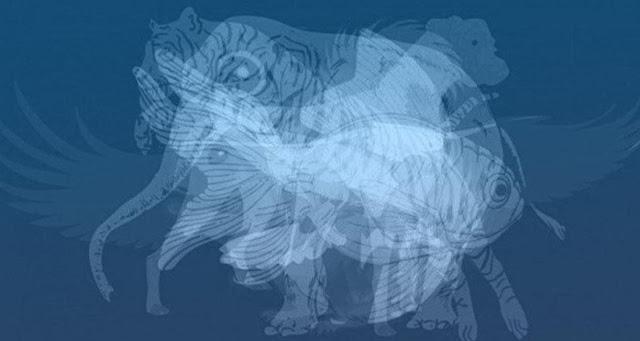 tes psikologi gambar hewan