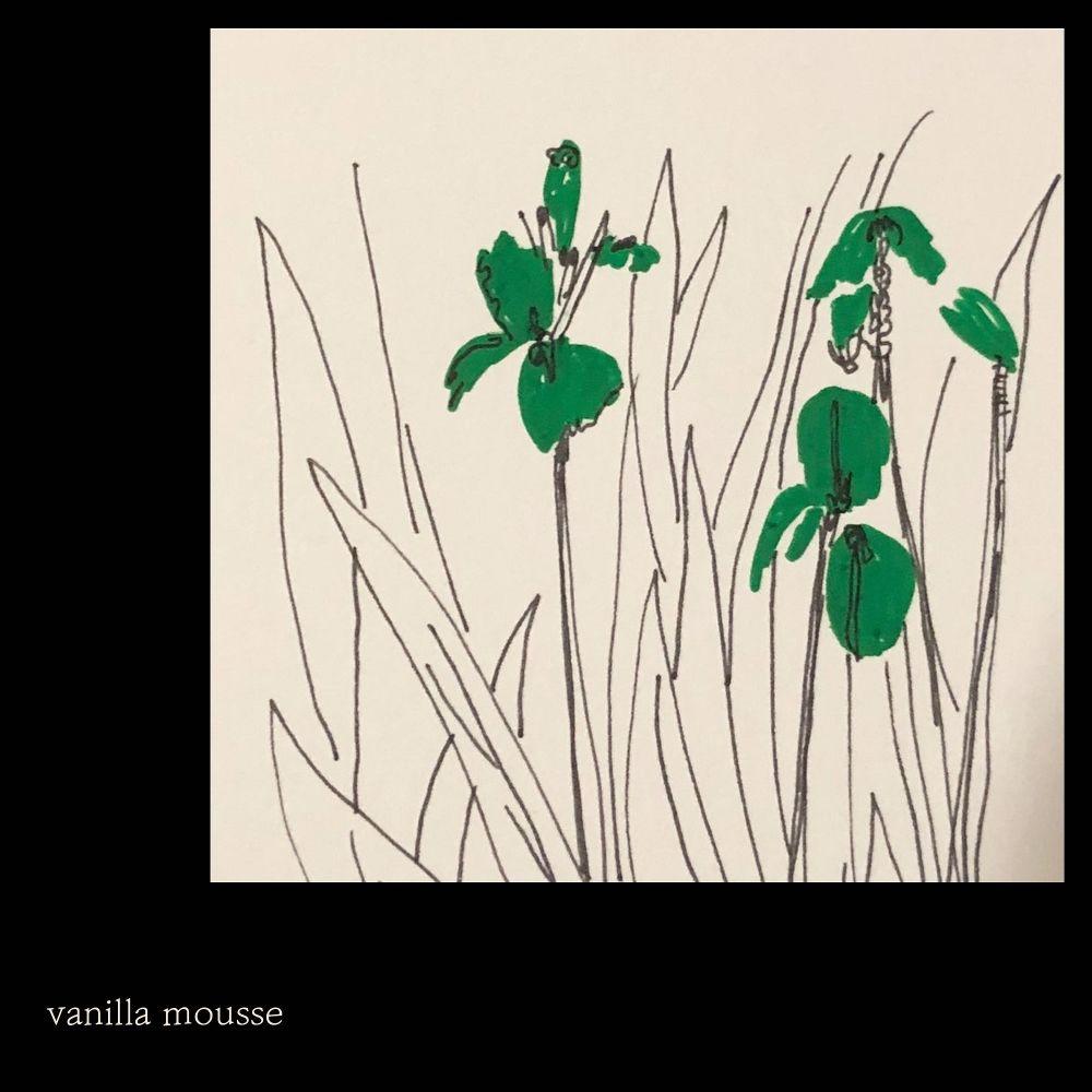 Vanilla Mousse – 산책 – Single