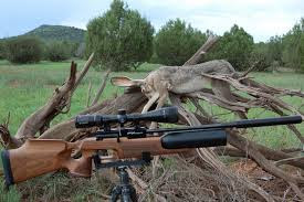 Choose Your Perfect Deer Hunting Rifle