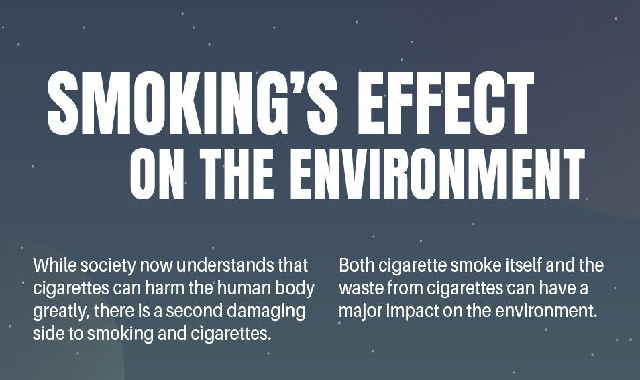 Smoking's Effect On The Environment #infographic
