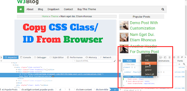 Copy class or ID of customize CSS