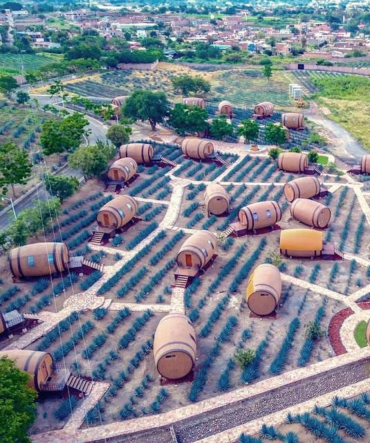 Pese a los inicios pacíficos del poblado, en 1541 en una revuelta de varios poblados incluyendo a Tequila, varios de los frailes fueron ejecutados incluyendo a fray Juan Calero (fundador del municipio).