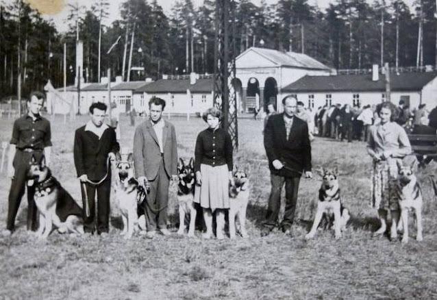 1950-е годы. Рига. Межапарк. Возле входа на зимний каток