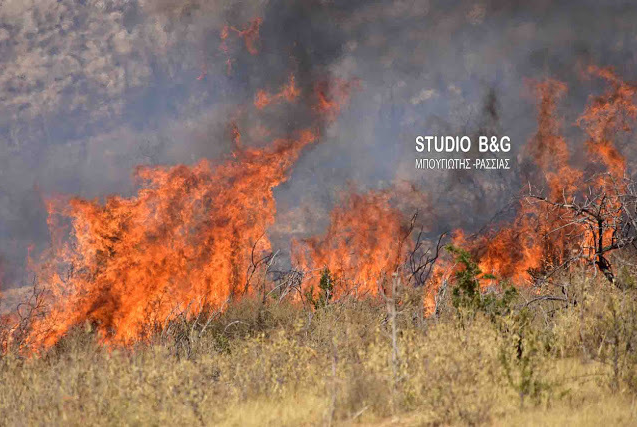 Πυρκαγιά κοντά στο Μαλαντρένι Αργολίδας