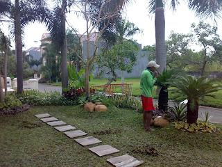 Taman minimalis depan rumah surabaya jasataman co id