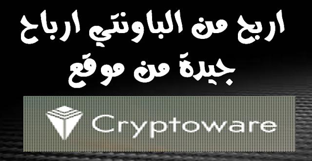 Cryptowarebiz website