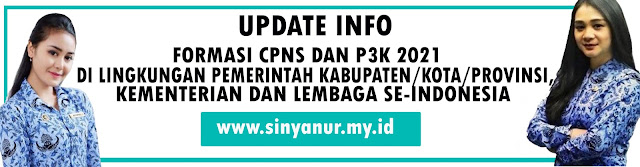 Update Daftar Formasi CPNS dan PPPK 2021 Di Lingkungan Pemerintah Kabupaten/Kota dan Provinsi, Lembaga dan Kementerian Se Indoneisa
