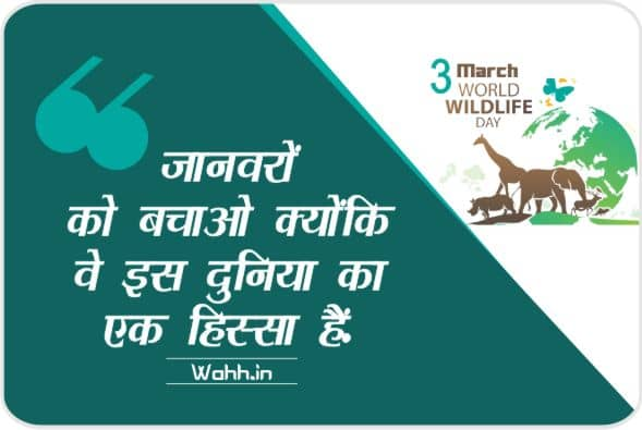 world wildlife day quotes poster in hindi