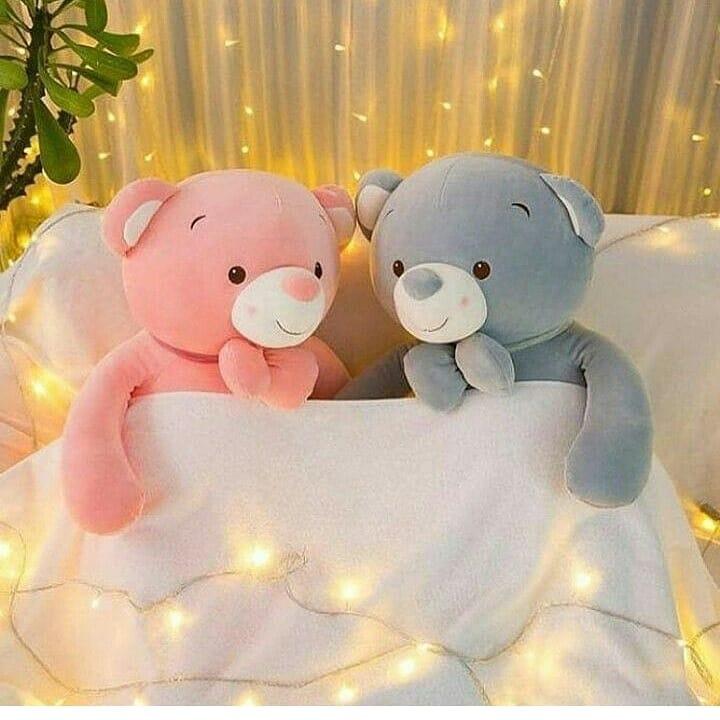 Teddy bear dp