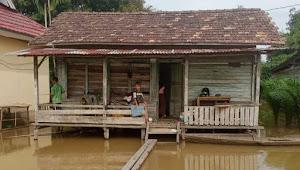 389 Rumah Terdampak Banjir di Desa Pulu kayu Aro