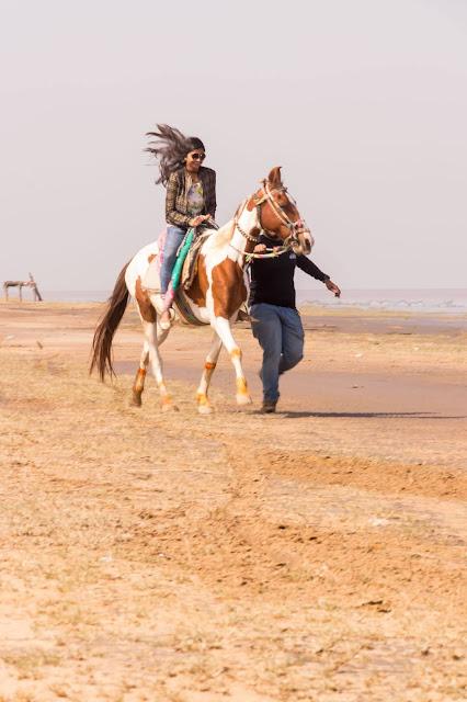 Casual Abstractions, Kavi Kamboi, Gujarat,  Horse Ride, Travel Story,