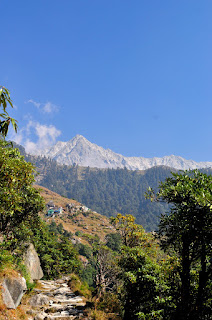 Exciting trekking of the Triund