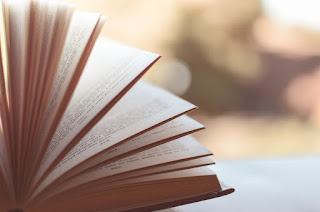 Digital Playbook vs. Cookbook: What's your Hand Book to Make a Leap of Digital Transformation