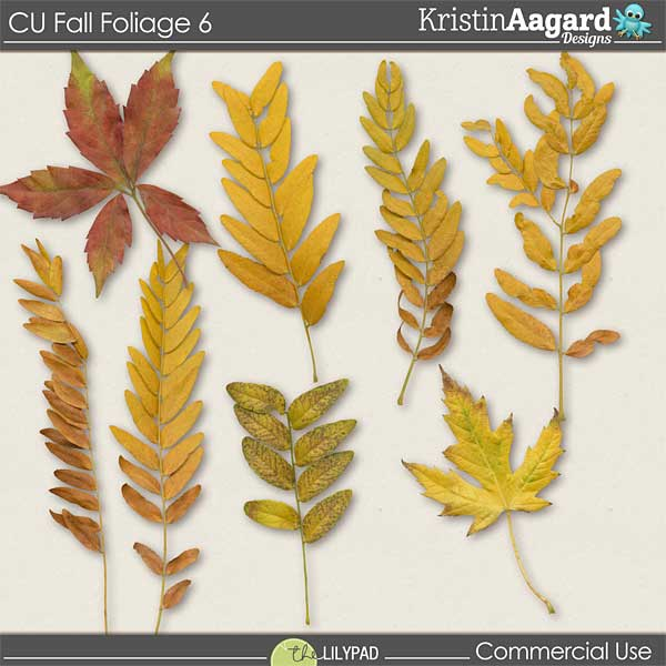 http://the-lilypad.com/store/digital-scrapbooking-cu-fall-foliage-6.html