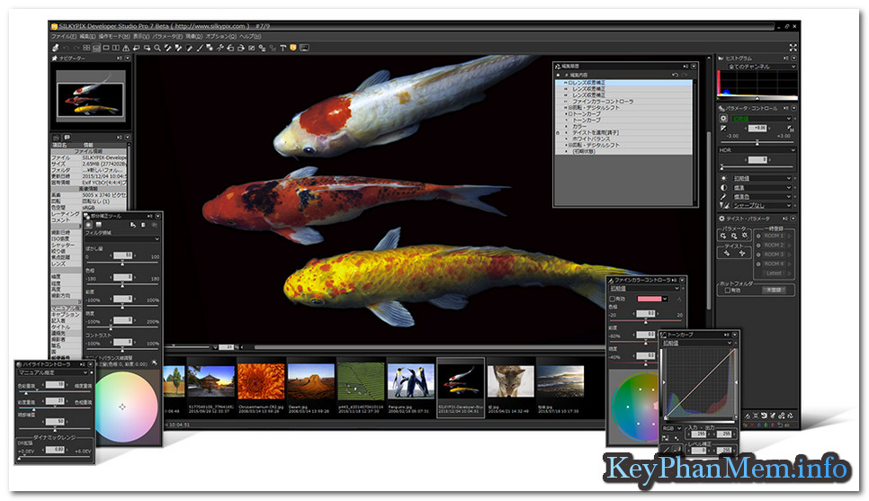 Download Silkypix Developer Studio Pro 8 Full Key, Phần mềm xứ lý ảnh RAW của Nhật Bản