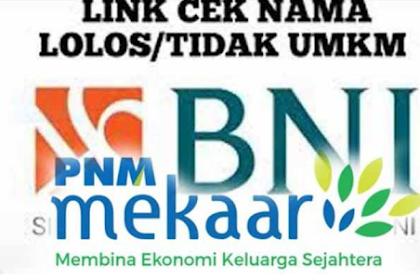 www.kemenkopukm.go.id Daftar BLT UMKM 2021, Penerima UMKM PNM Mekaar BNI / BRI Cek Eform Caranya.