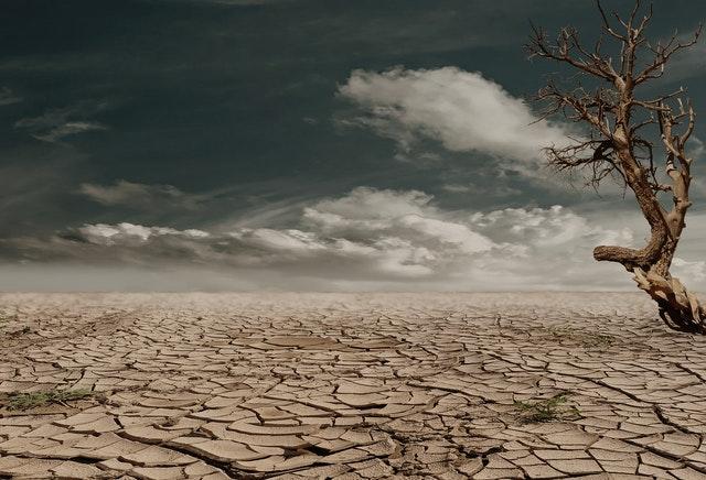 The Earth is getting warmer—Global Warming-A Warning