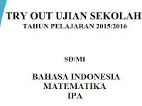 Download Kumpulan Soal Try Out Ujian Sekolah SD/MI 2016