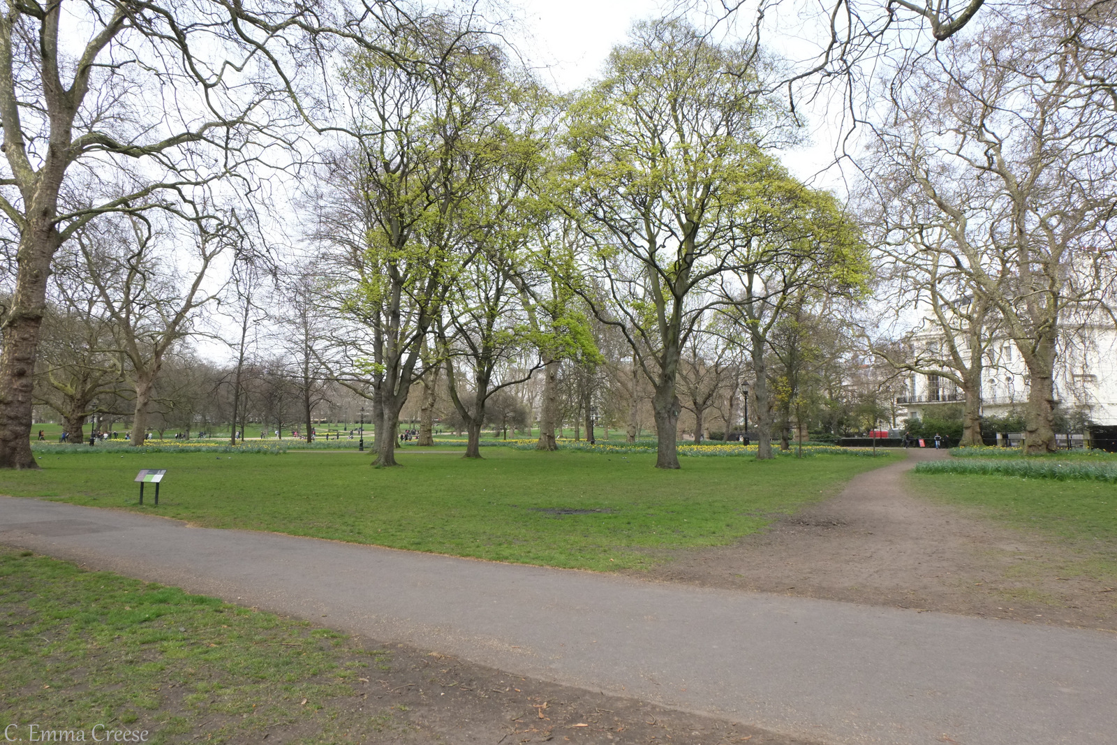St James's Park and Green Park Adventures of a London Kiwi