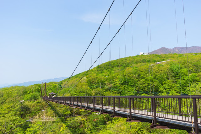 つつじ吊橋~那須八幡のつつじ群落(栃木県)