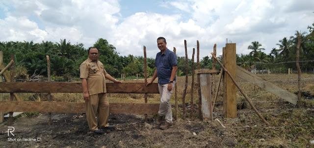 Desa Setia Marga memanfaatkan lahan tidur