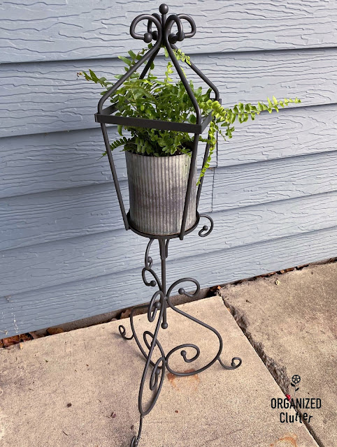 Photo of a small Boston Fern in a galvanized pot on a repurposed candleholder