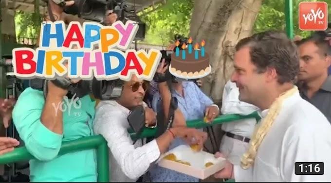 सेवाभाव के साथ मनाई राहुल गांधी के जन्मदिन की खुशी: गोशाला में पौधारोपण ,गायो को घास खिलाई, महादेव मंदिर में किया पूजन