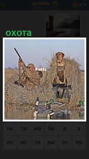 мужчина охотник с ружьем и собака рядом в западне ждут дичь