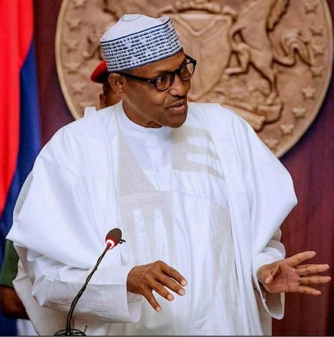 President Buhari Approves N6.52b For Cattle Ranching In Katsina