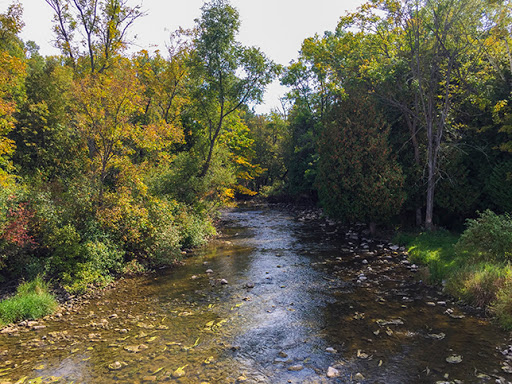 Ahnapee River on the Forestville Segment of the Ice Age Trail