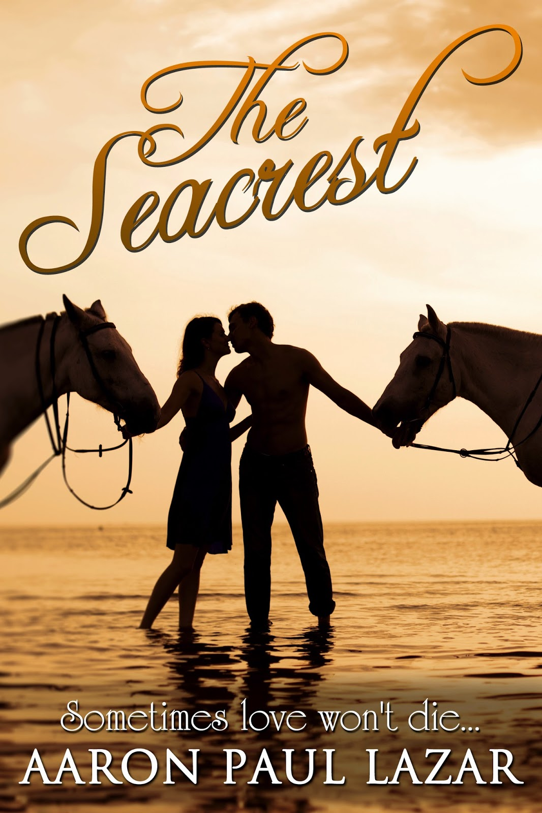 http://www.amazon.com/The-Seacrest-A-love-story-ebook/dp/B00G1TDBRI/ref=tmm_kin_title_0?ie=UTF8&qid=1419593564&sr=1-4