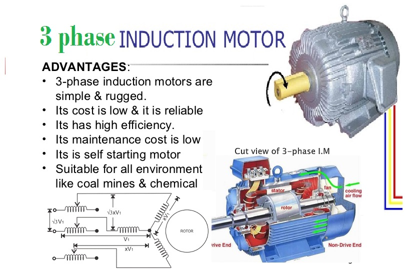 3phase Induction Motor Electronics Technology Degree